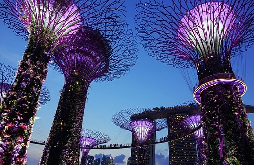 Singapore__garden-by-the-bay